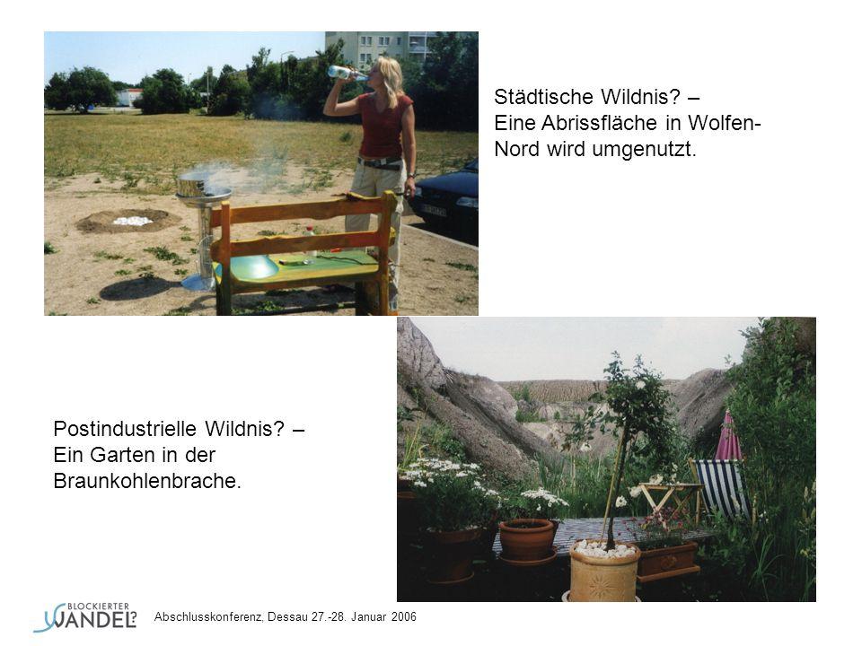 Städtische Wildnis? – Eine Abrissfläche in Wolfen- Nord wird umgenutzt. Postindustrielle Wildnis? – Ein Garten in der Braunkohlenbrache. Abschlusskonf