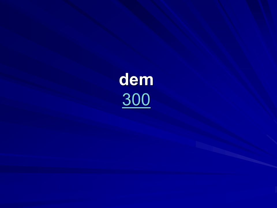 dem 300 300