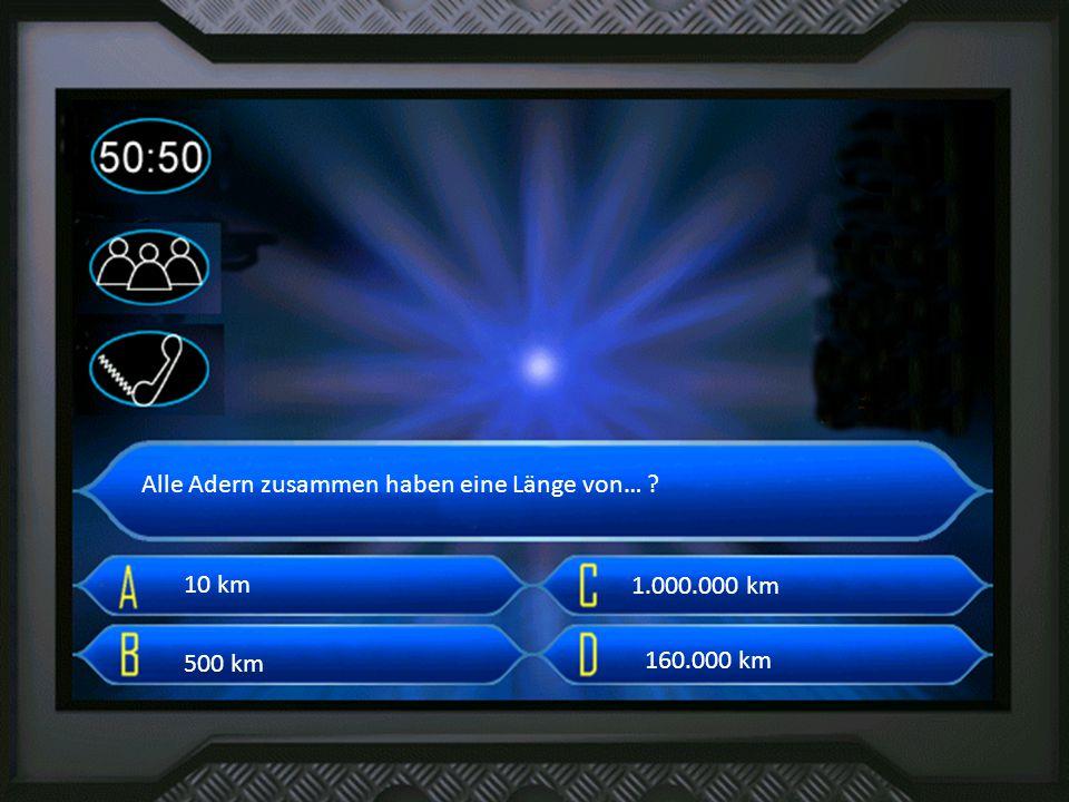 38L Alle Adern zusammen haben eine Länge von… ? 10 km 500 km 160.000 km 1.000.000 km