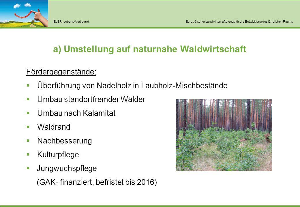 ELER. LebensWert Land.Europäischer Landwirtschaftsfonds für die Entwicklung des ländlichen Raums a) Umstellung auf naturnahe Waldwirtschaft Fördergege