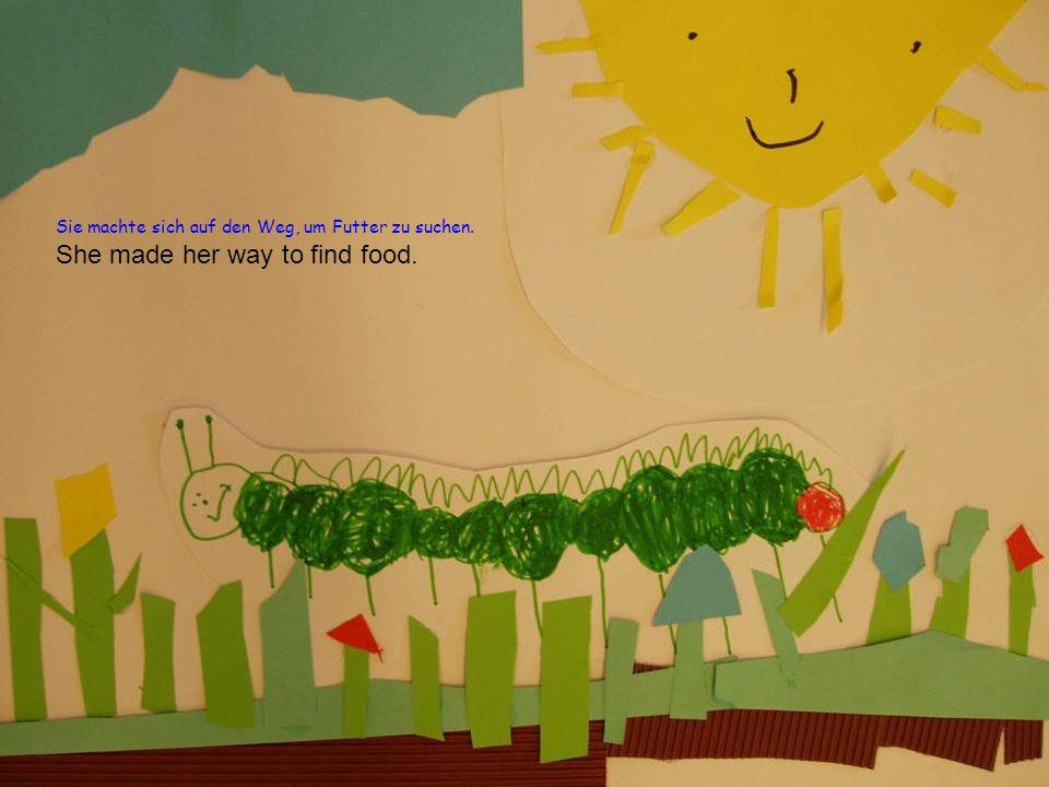 Sie machte sich auf den Weg, um Futter zu suchen. She made her way to find food.