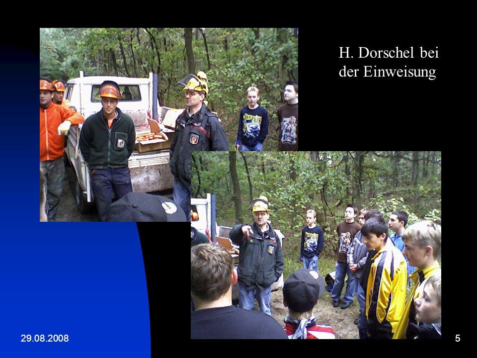 29.08.200825 Lagerung der Bäume am Wegerand