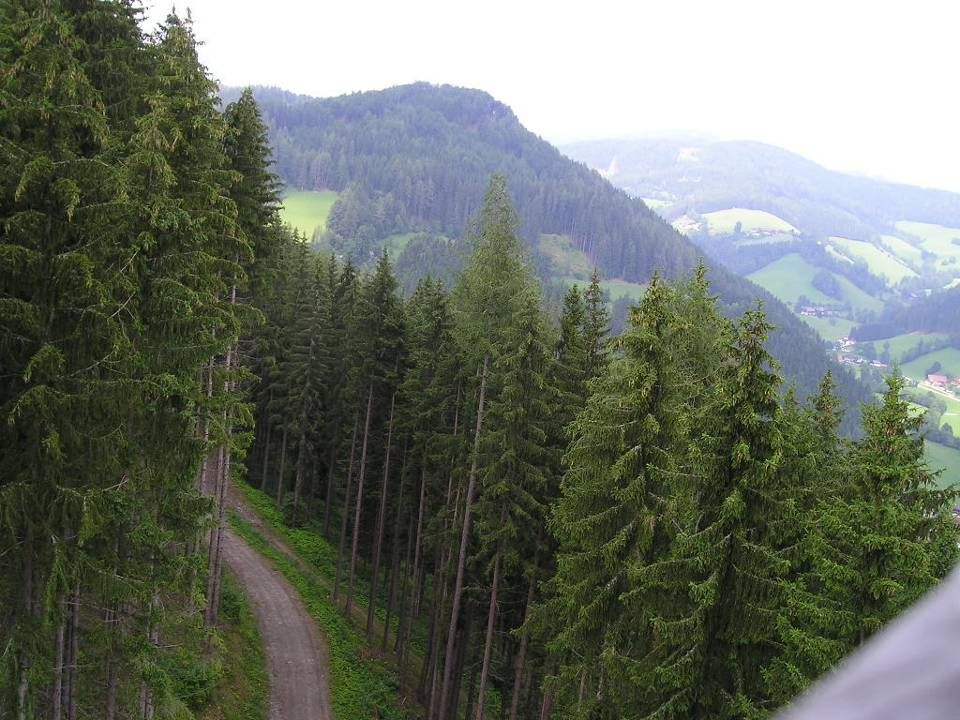 lohnender Blick ins Tal
