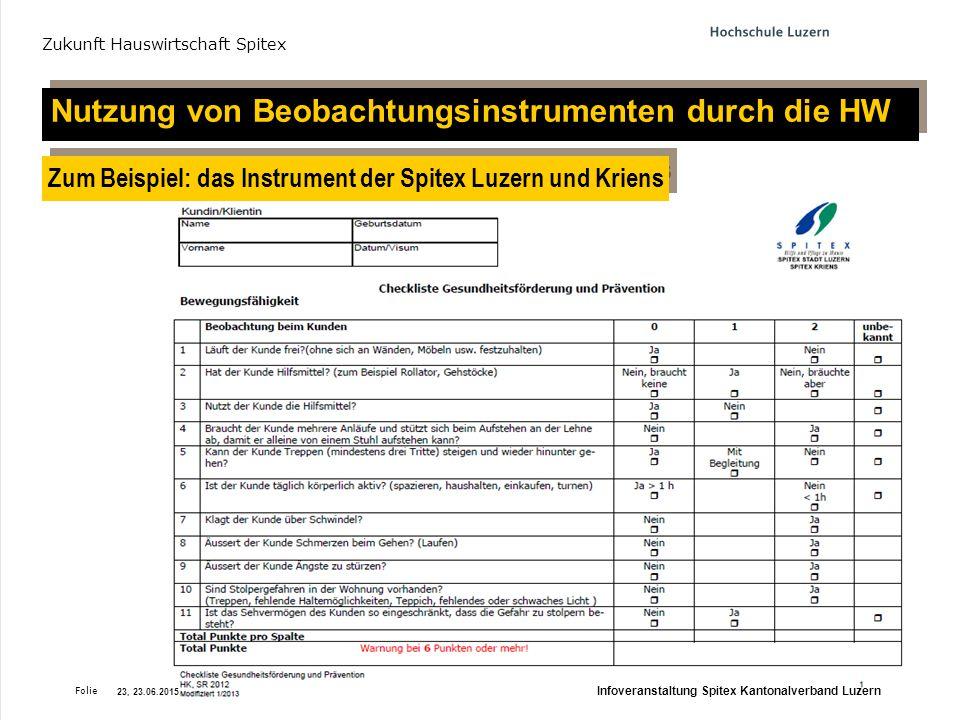 Folie Projekt-Meeting 'Zukunft Hauswirtschaft Spitex, 24.