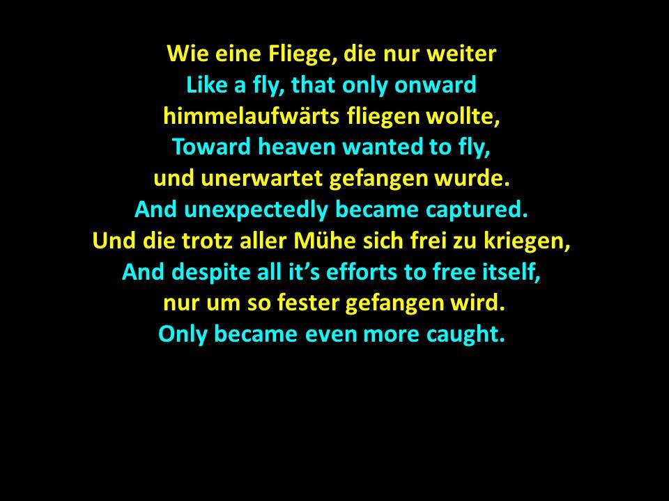 Wie eine Fliege, die nur weiter Like a fly, that only onward himmelaufwärts fliegen wollte, Toward heaven wanted to fly, und unerwartet gefangen wurde.