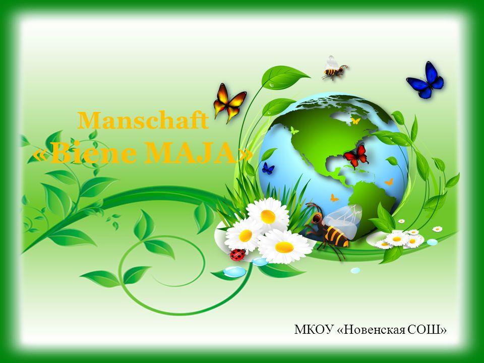Manschaft «Biene MAJA» МКОУ «Новенская СОШ»
