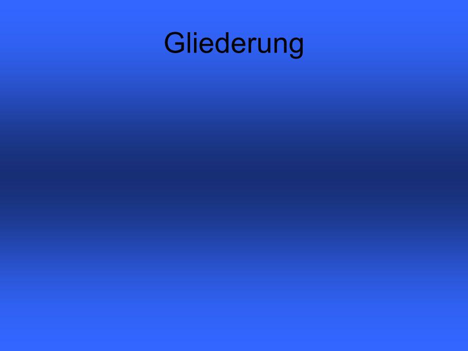 Die Stadtmauer von Gelnhausen Markus / Walid / Marc / Julian