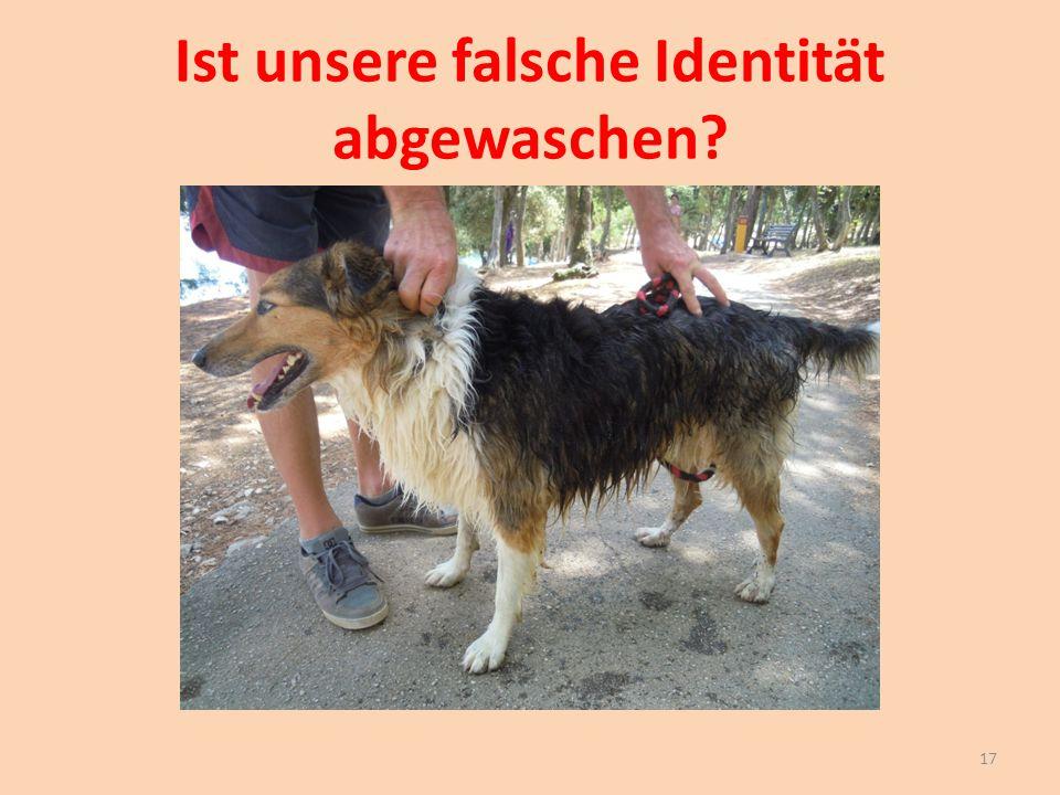 Ist unsere falsche Identität abgewaschen? 17