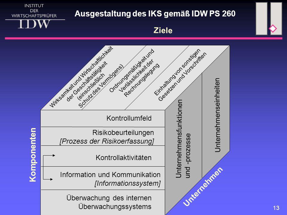 13 Kontrollumfeld Risikobeurteilungen [Prozess der Risikoerfassung] Kontrollaktivitäten Information und Kommunikation [Informationssystem] Überwachung