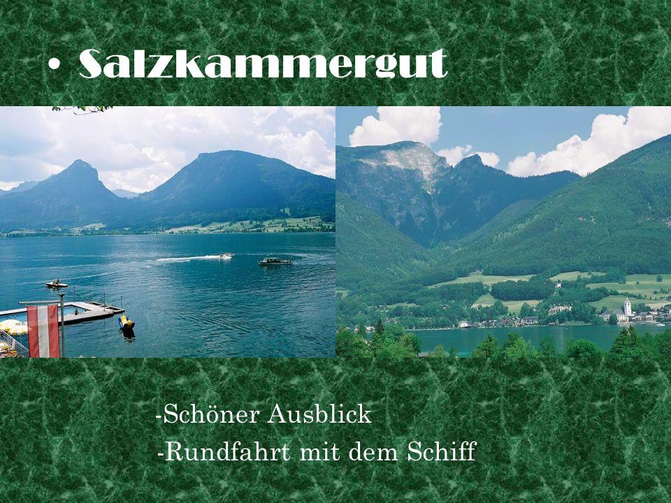 Salzkammergut -Schöner Ausblick -Rundfahrt mit dem Schiff