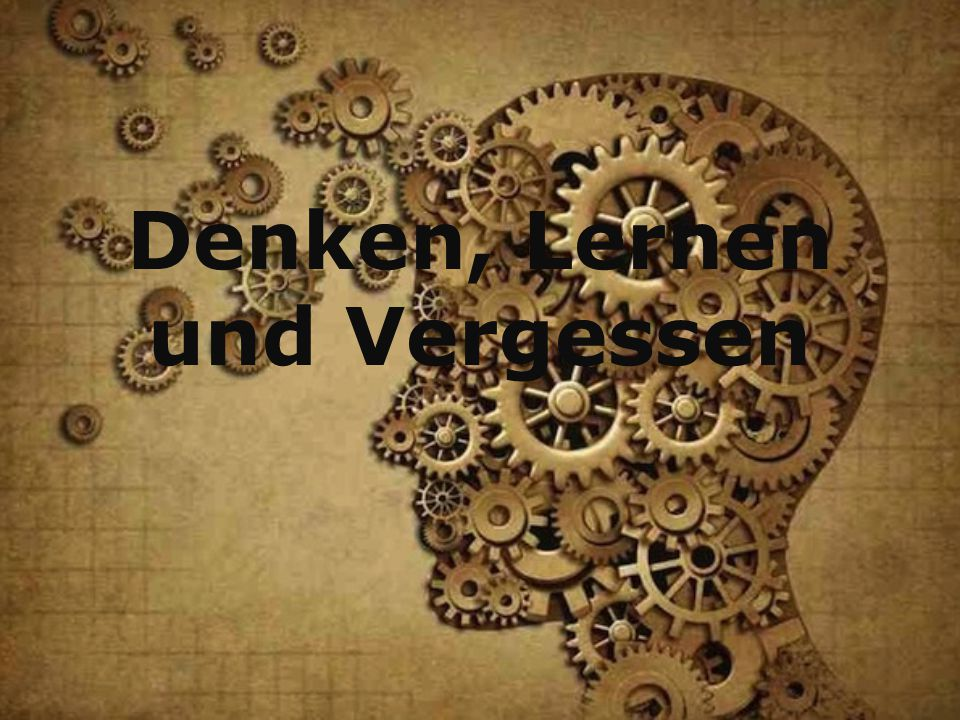 Denken, Lernen und Vergessen
