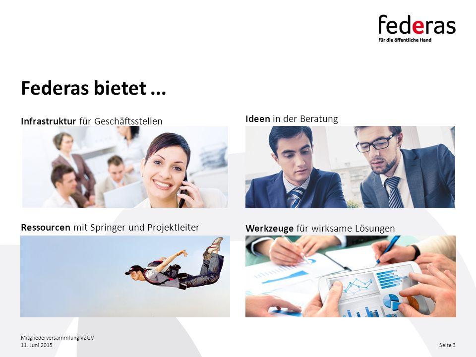 Federas bietet... Ideen in der Beratung Ressourcen mit Springer und Projektleiter Werkzeuge für wirksame Lösungen Infrastruktur für Geschäftsstellen 1