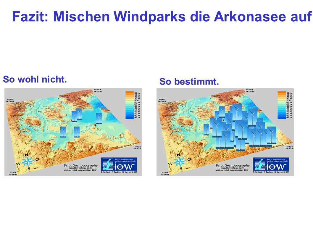 Fazit: Mischen Windparks die Arkonasee auf ? So wohl nicht. So bestimmt.