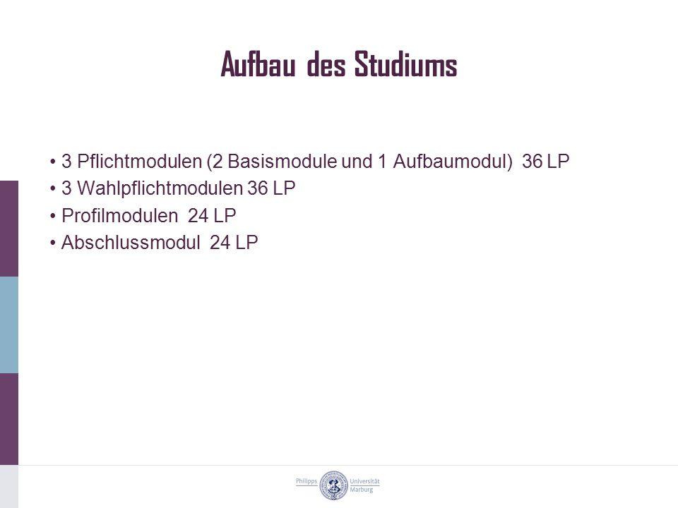 Aufbau des Studiums 3 Pflichtmodulen (2 Basismodule und 1 Aufbaumodul) 36 LP 3 Wahlpflichtmodulen 36 LP Profilmodulen 24 LP Abschlussmodul 24 LP