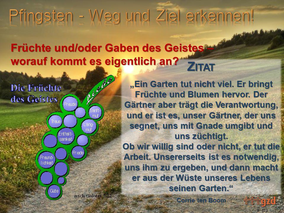 """ GZD 2015 Z ITAT """"Ein Garten tut nicht viel. Er bringt Früchte und Blumen hervor."""