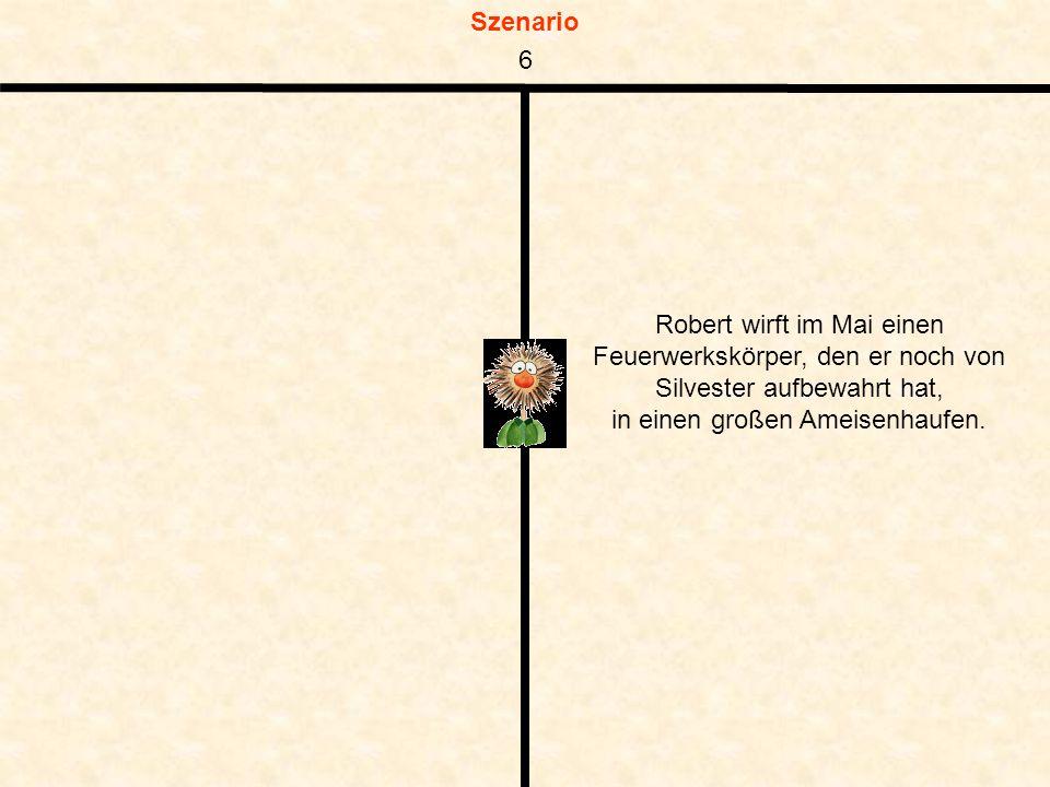 Szenario Robert wirft im Mai einen Feuerwerkskörper, den er noch von Silvester aufbewahrt hat, in einen großen Ameisenhaufen.