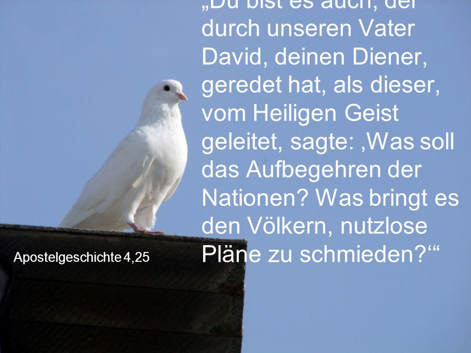 """Apostelgeschichte 4,25 """"Du bist es auch, der durch unseren Vater David, deinen Diener, geredet hat, als dieser, vom Heiligen Geist geleitet, sagte: 'W"""