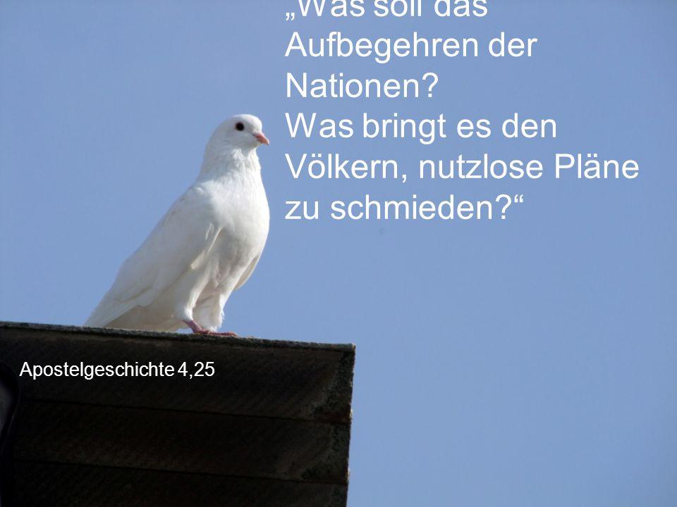 """Apostelgeschichte 4,25 """"Was soll das Aufbegehren der Nationen? Was bringt es den Völkern, nutzlose Pläne zu schmieden?"""""""
