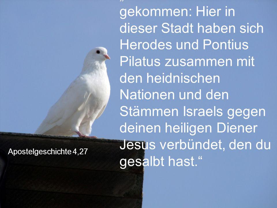 """Apostelgeschichte 4,27 """"So ist es tatsächlich gekommen: Hier in dieser Stadt haben sich Herodes und Pontius Pilatus zusammen mit den heidnischen Natio"""