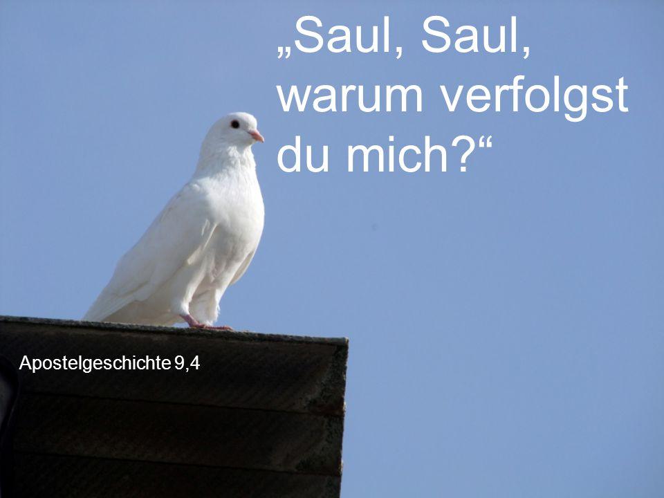 """Apostelgeschichte 9,4 """"Saul, Saul, warum verfolgst du mich?"""""""