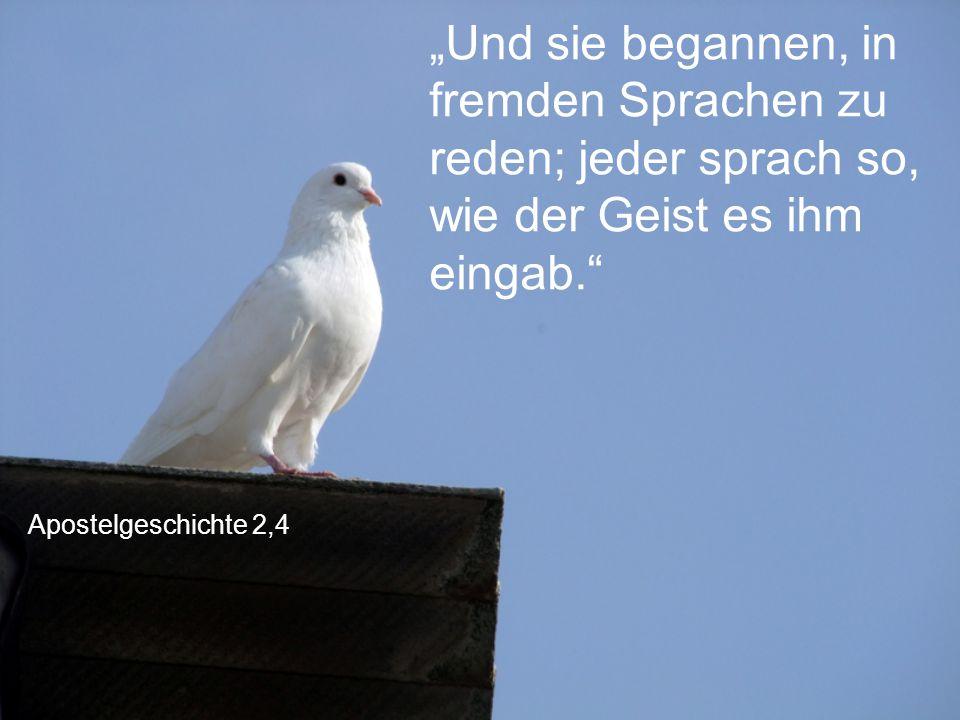 """Apostelgeschichte 2,4 """"Und sie begannen, in fremden Sprachen zu reden; jeder sprach so, wie der Geist es ihm eingab."""""""
