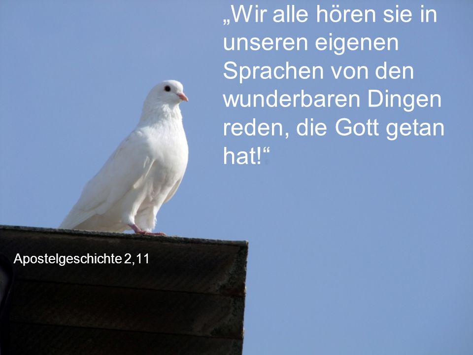 """Apostelgeschichte 2,11 """"Wir alle hören sie in unseren eigenen Sprachen von den wunderbaren Dingen reden, die Gott getan hat!"""""""