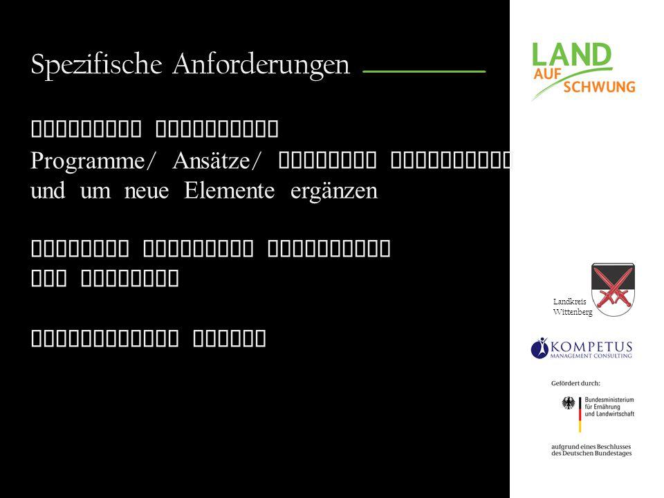 Landkreis Wittenberg Spezifische Anforderungen Bausteine bisheriger Programme / Ansätze / Konzepte aufgreifen und um neue Elemente ergänzen Konzepte passgenau entwickeln und umsetzen Integrierter Ansatz