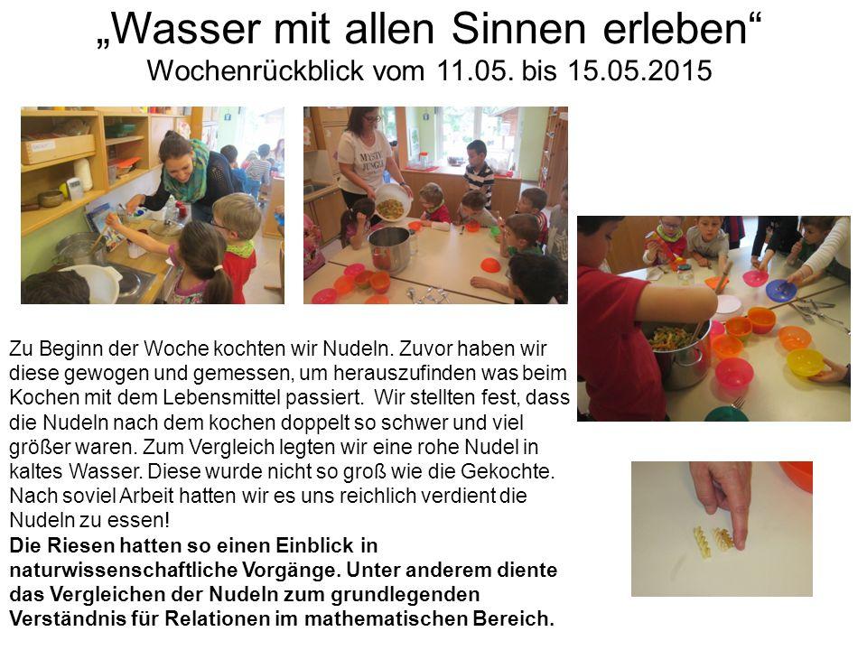 Am Dienstag trafen wir uns mit Frau Flenner vom Bund Naturschutz am Bach.