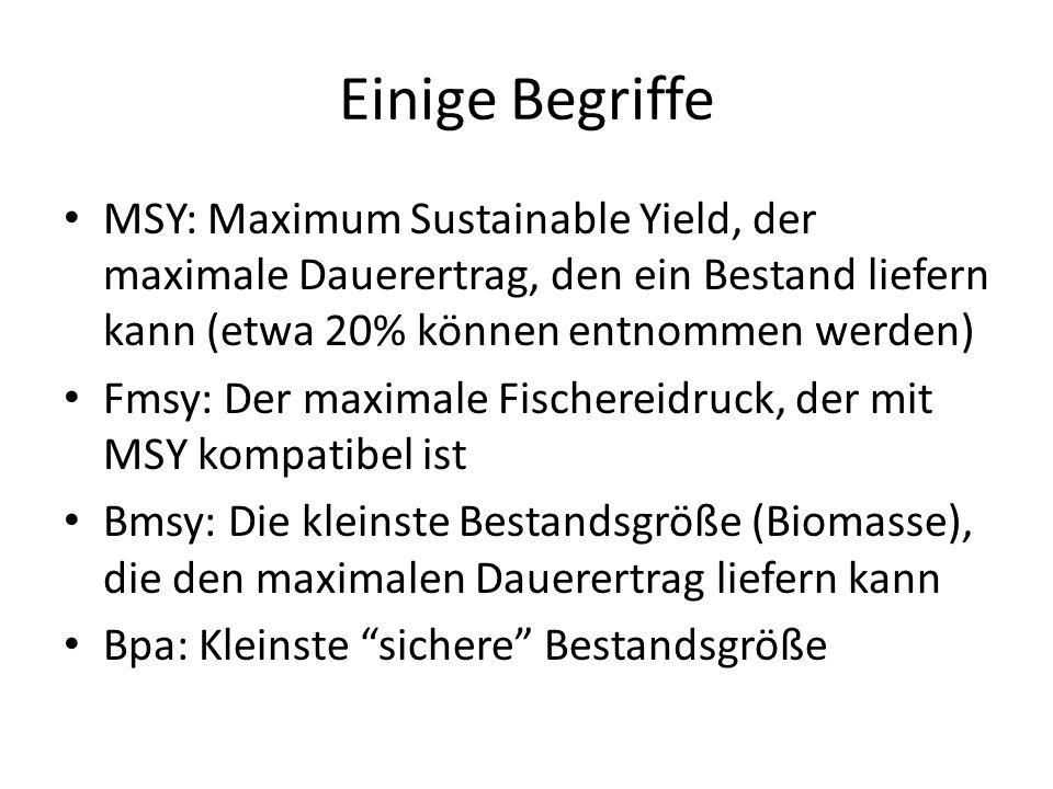 Einige Begriffe MSY: Maximum Sustainable Yield, der maximale Dauerertrag, den ein Bestand liefern kann (etwa 20% können entnommen werden) Fmsy: Der ma