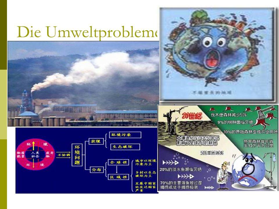 Die Umweltprobleme