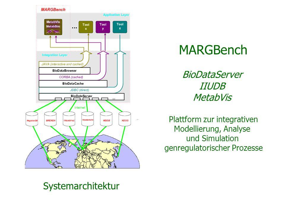 MARGBench BioDataServer IIUDB MetabVis Plattform zur integrativen Modellierung, Analyse und Simulation genregulatorischer Prozesse Systemarchitektur