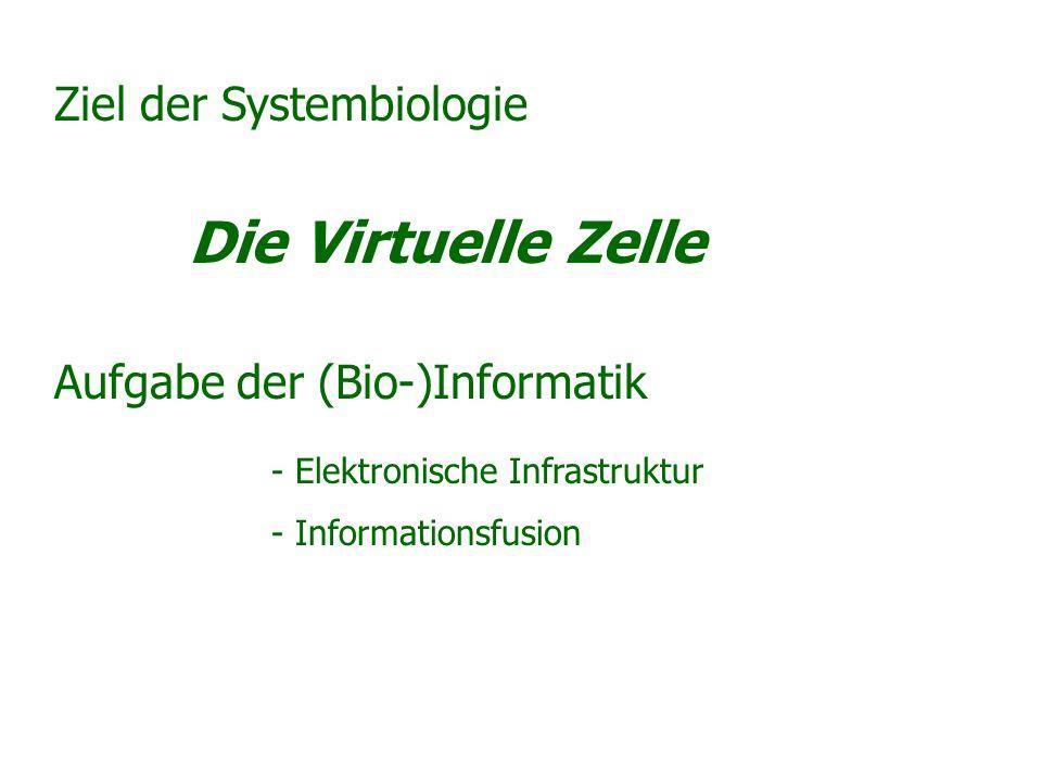 Ziel der Systembiologie Die Virtuelle Zelle Aufgabe der (Bio-)Informatik - Elektronische Infrastruktur - Informationsfusion