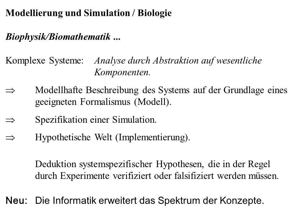 Modellierung und Simulation / Biologie Biophysik/Biomathematik... Komplexe Systeme:Analyse durch Abstraktion auf wesentliche Komponenten.  Modellhaft