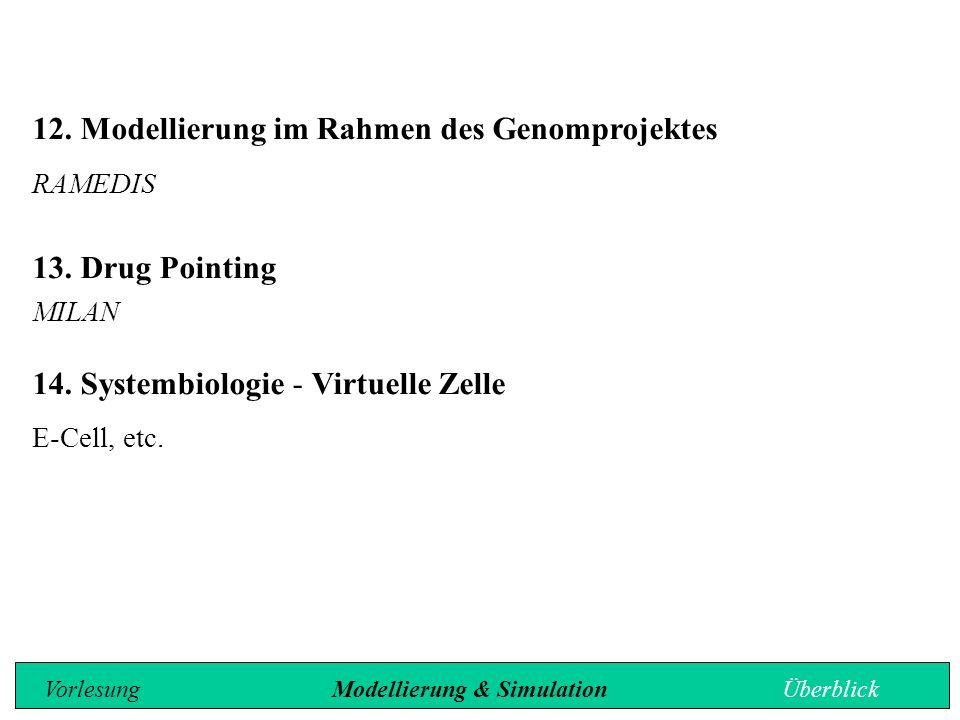 12.Modellierung im Rahmen des Genomprojektes RAMEDIS 13. Drug Pointing MILAN 14. Systembiologie - Virtuelle Zelle E-Cell, etc. Vorlesung Modellierung
