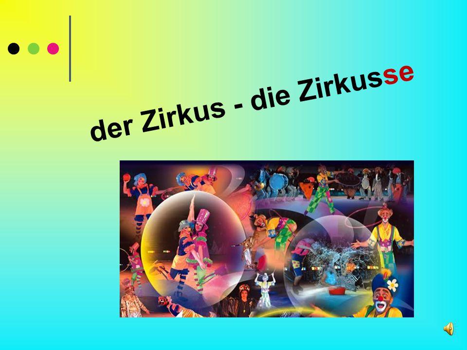 der Zirkus - die Zirkusse