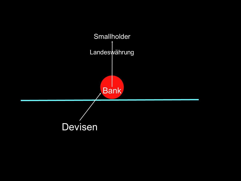 Devisen Bank Smallholder Landeswährung
