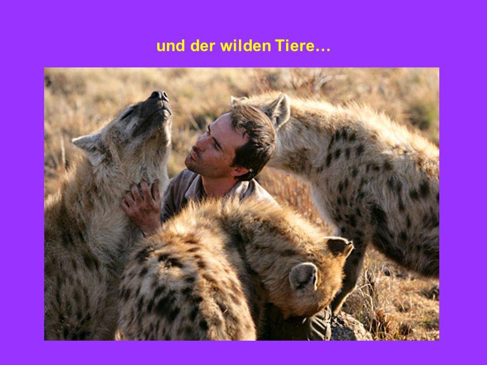 und der wilden Tiere…