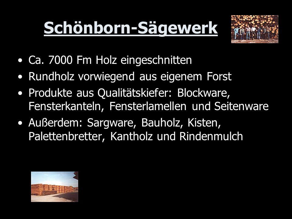 Schönborn-Sägewerk Ca. 7000 Fm Holz eingeschnitten Rundholz vorwiegend aus eigenem Forst Produkte aus Qualitätskiefer: Blockware, Fensterkanteln, Fens