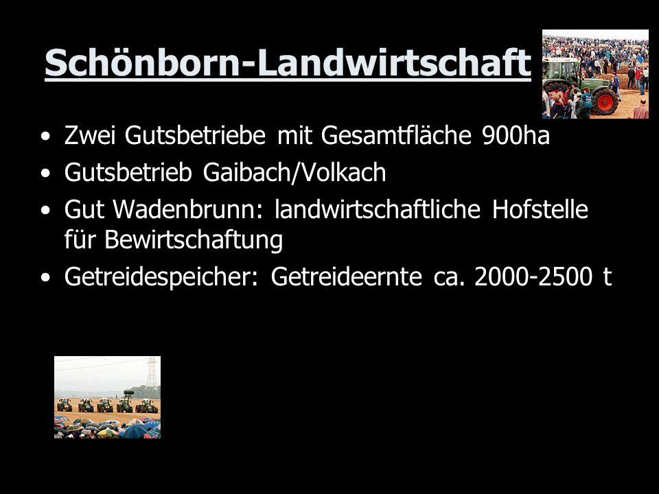 Schönborn-Landwirtschaft Zwei Gutsbetriebe mit Gesamtfläche 900ha Gutsbetrieb Gaibach/Volkach Gut Wadenbrunn: landwirtschaftliche Hofstelle für Bewirt