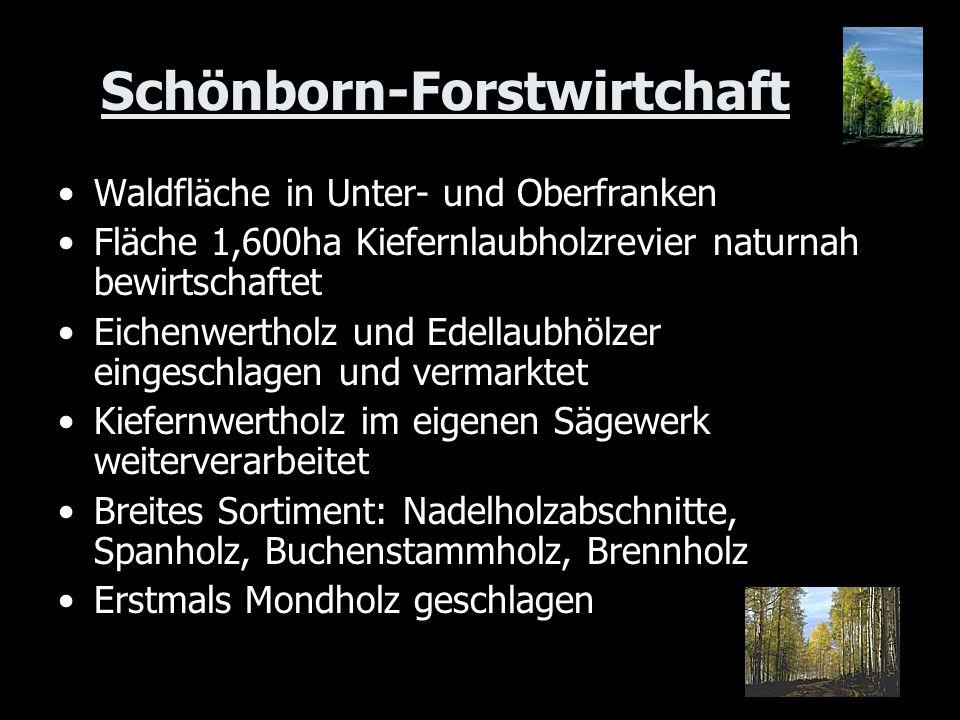 Schönborn-Forstwirtchaft Waldfläche in Unter- und Oberfranken Fläche 1,600ha Kiefernlaubholzrevier naturnah bewirtschaftet Eichenwertholz und Edellaub