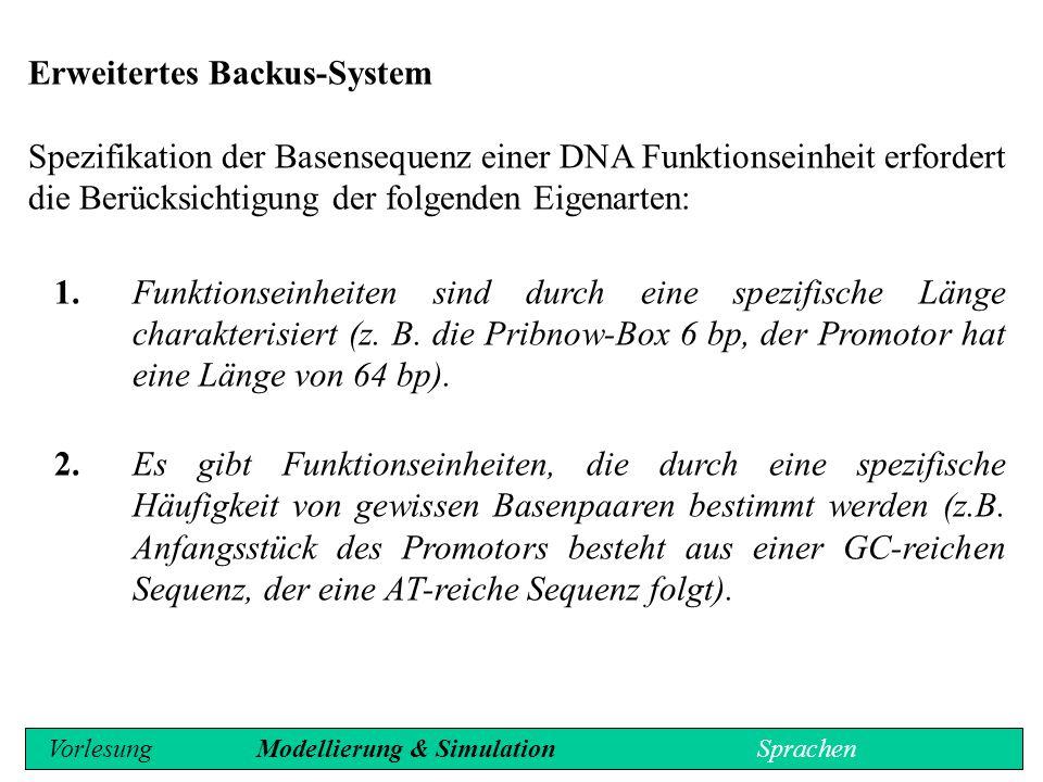 Interpretation: DNA als Sprache Genetische Sprache besitzt mindestens sechs Ebenen: - Codon, - Cistron, - Scripton, - Replicon, - Segregon und - Genom.