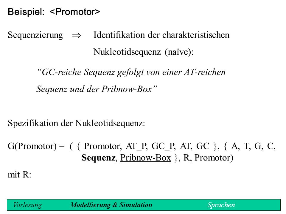 ::= Pribnow-Box Sequenz (10:15) ::= | (6/7,1) ::= A | T (10:15) ::= | (6/7,1) ::= G | C ::= A | T ::= G | C Vorlesung Modellierung & Simulation Sprachen
