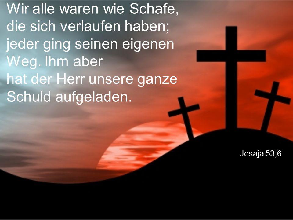 Jesaja 53,6 Wir alle waren wie Schafe, die sich verlaufen haben; jeder ging seinen eigenen Weg. Ihm aber hat der Herr unsere ganze Schuld aufgeladen.