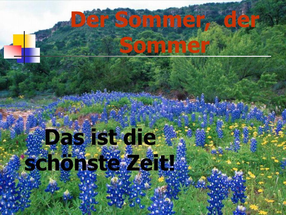 Der Sommer, der Sommer Das ist die schönste Zeit!
