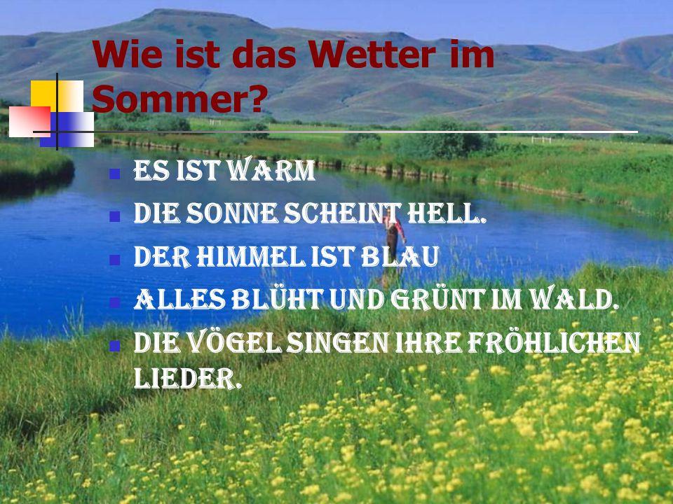 Wie ist das Wetter im Sommer? Es ist warm Die Sonne scheint hell. Der Himmel ist blau Alles blüht und grünt im Wald. Die Vögel singen ihre fröhlichen