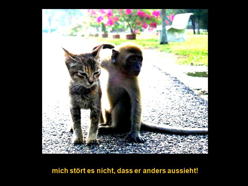 wir sind s t o l z auf u n s !! hme12@t-online.de