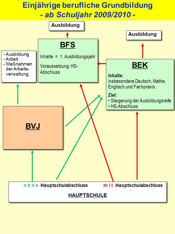 Berufvorbereitungsjahr (BVJ) Eingangsvoraussetzung: In das BVJ können Schülerinnen und Schüler aufgenommen werden, die den Sek.-I-Bereich ohne Abschluss verlassen und nicht aus einer Abschlussklasse kommen.