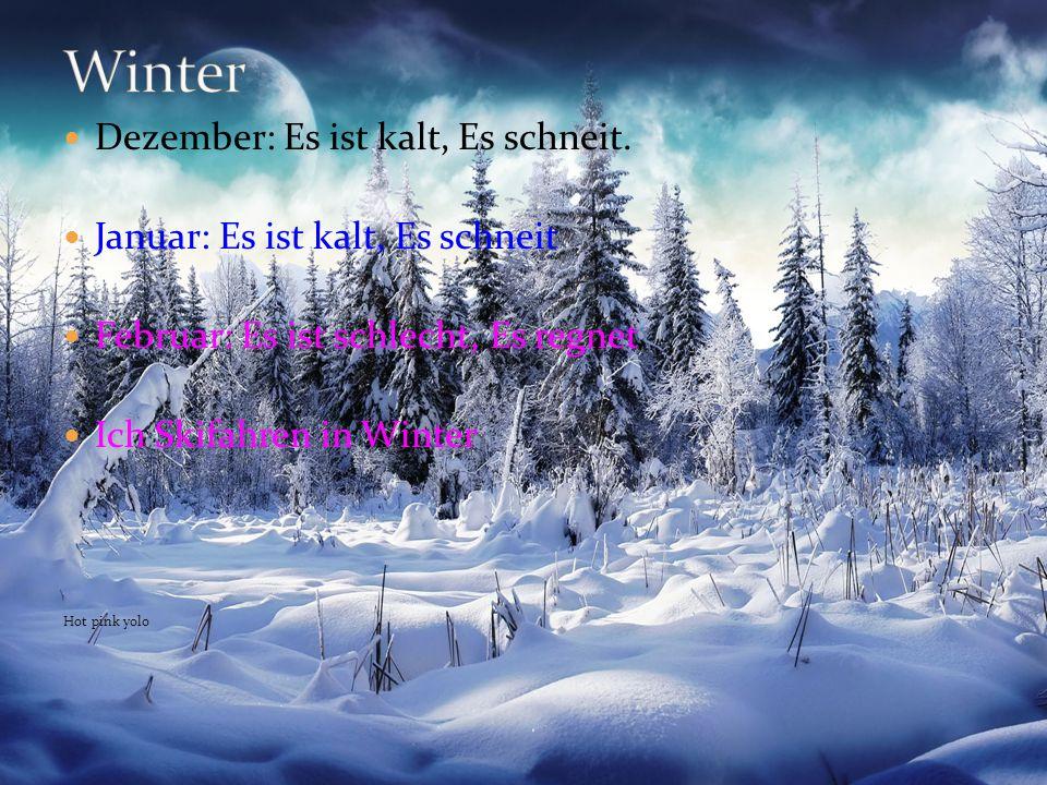 Dezember: Es ist kalt, Es schneit. Januar: Es ist kalt, Es schneit Februar: Es ist schlecht, Es regnet Ich Skifahren in Winter Hot pink yolo