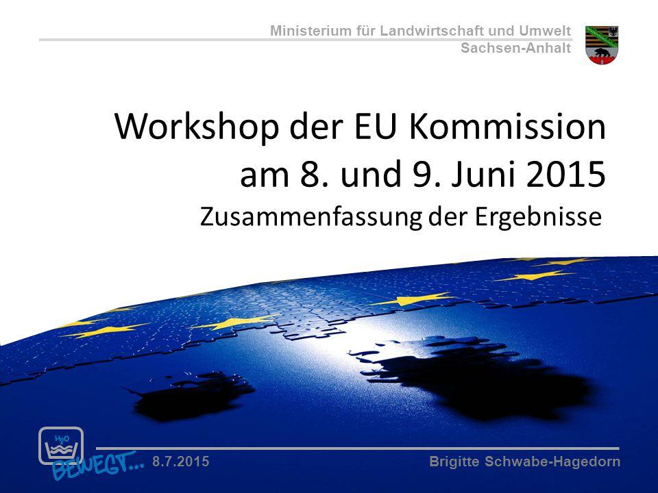 Ministerium für Landwirtschaft und Umwelt Sachsen-Anhalt 8.7.2015Brigitte Schwabe-Hagedorn Workshop der EU Kommission am 8. und 9. Juni 2015 Zusammenf