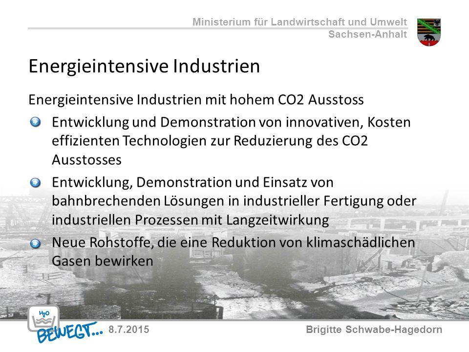 Energieintensive Industrien Energieintensive Industrien mit hohem CO2 Ausstoss Entwicklung und Demonstration von innovativen, Kosten effizienten Techn
